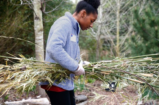 Volunteer Tamera Sullivan collects branches to be recycled.